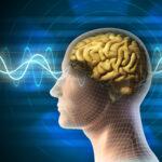 6 grunner for å trene hjernen din!